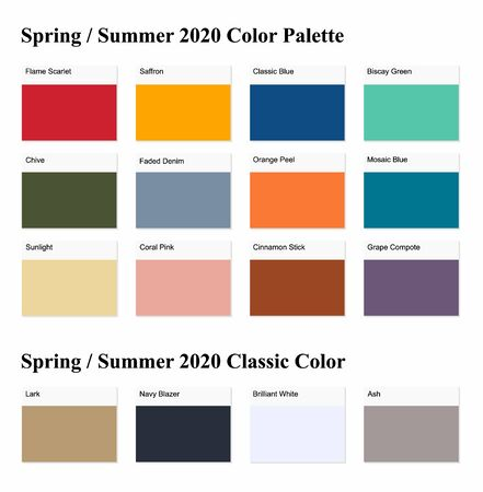 Spring  Summer 2020 Palette Example. Future Color Trend Forecast. Vector illustration