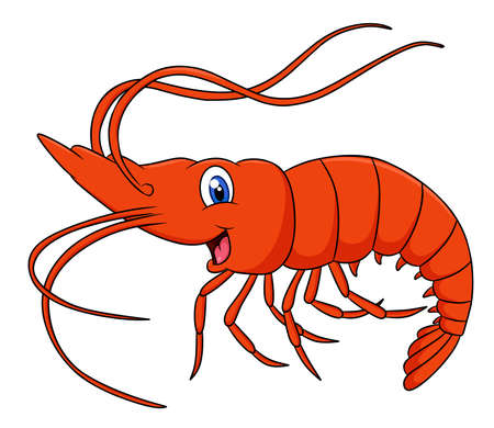Cute Shrimp animal cartoon illustration Ilustración de vector