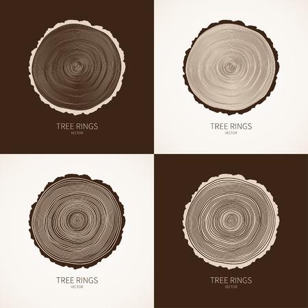 albero pino: Anelli degli alberi Vector sfondo concettuale