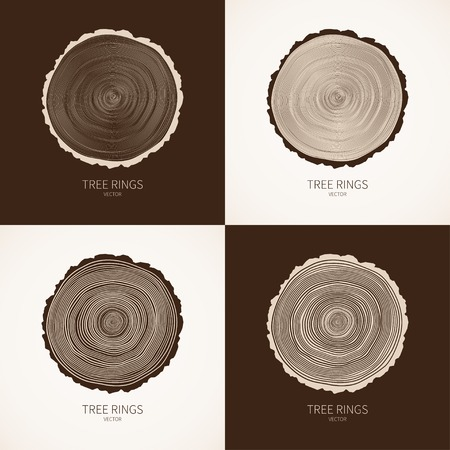 black wood texture: Vector tree rings conceptual background Illustration