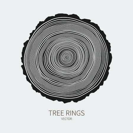 arbol: Anillos de los árboles Vector fondo conceptual Vectores