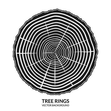 tronco: Tres anillos. Corte transversal de un árbol. símbolo de crecimiento anual, icono o logotipo aislado en el fondo blanco Vectores