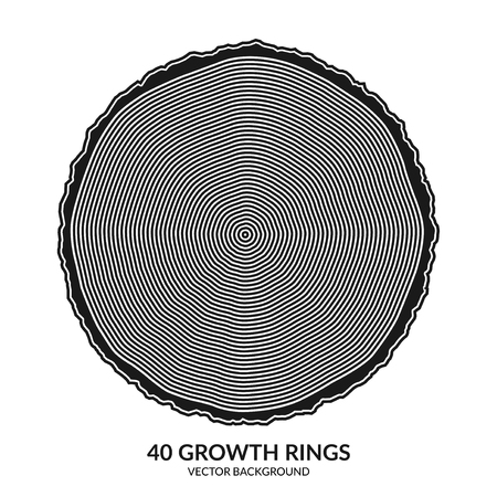 40 growth rings. Tree rings and saw cut tree trunk. Can be used as 40th anniversary concept. Vector illustration Illustration