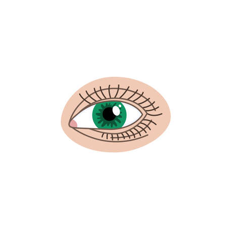 The human eye is green. Vector illustration.