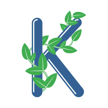 Letter K in floral style with a branch and leaves. Template element for design