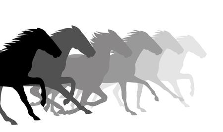 Running horses on white background, vector illustration.