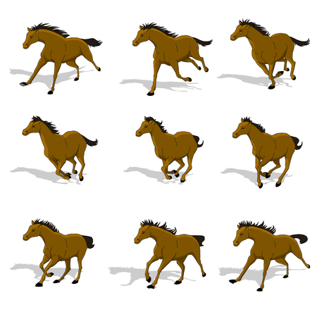 Horse run cycle animation sprite sheet