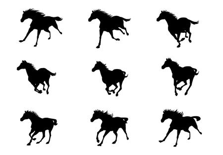 Horse run cycle animation sprite sheet