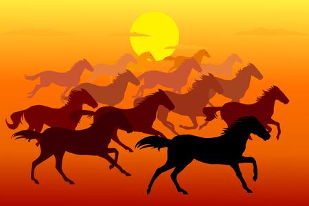 夕方に馬を走る ベクターイラストレーション