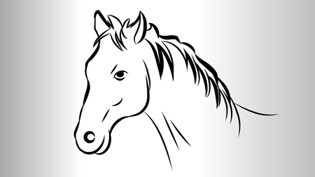 Horse face outline