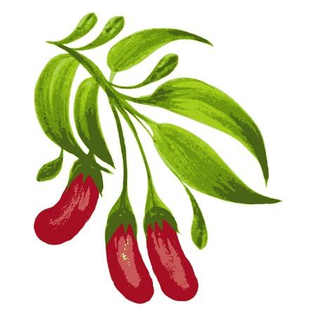 hand drawn illustration in Ukrainian folk style Stock Vector - 28024886