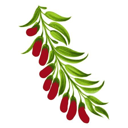 hand drawn illustration in Ukrainian folk style Stock Vector - 28879305
