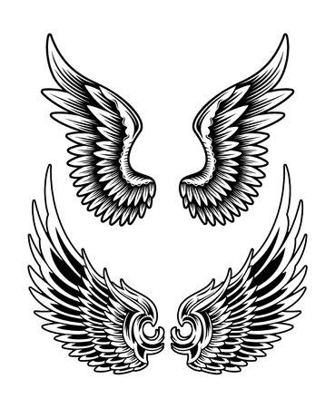 확산 날개 세트의 편집 가능한 벡터 일러스트 레이 션, 디자인 요소에 대 한 유용이 이미지는이 파일을 편집 가능한 EPS 벡터 파일을 JPEG 높은 해상도로