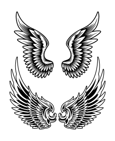 editable vector illustration of spread wing set, usefull for design element  This Image consists of two files  Editable EPS Vector file   JPEG High Resolution