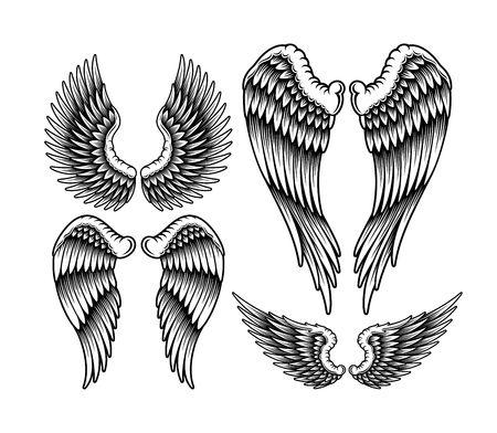 tatouage ange: Paire d'ailes