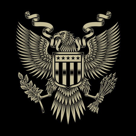 Emblème American Eagle Banque d'images - 42436427