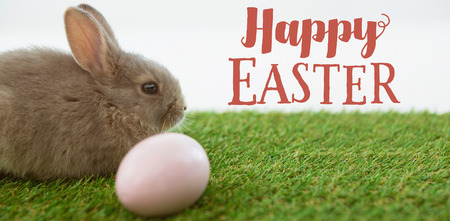 Easter greeting against easter eggs and easter bunny in grass Stock Photo