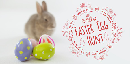 Easter Egg Hunt  against white background against easter eggs and easter bunny Stock Photo