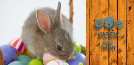 easter egg hunt graphic against wooden planks