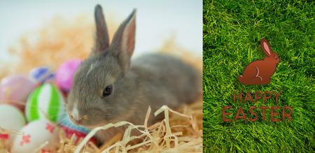 Feliz saludo de Pascua contra el fondo de la hierba
