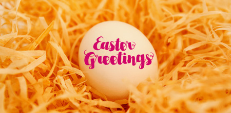 plant stand: Easter greeting against white easter egg in nest Stock Photo