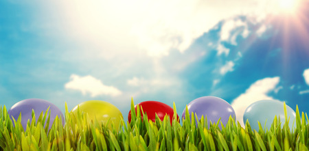 Grass growing outdoors against blue sky Stock Photo
