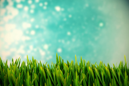 Grass growing outdoors against light design shimmering on blue