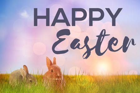 rabbit standing: Easter greeting against flock of bird flying over field