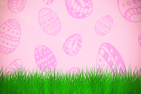 grass against white background  against pink background