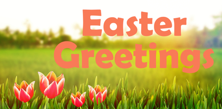 Easter greeting against rice crops growing in fields