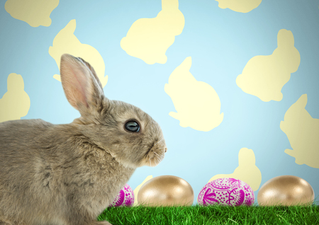grass blades: Digital composite of Easter rabbit with eggs in front of pattern Stock Photo