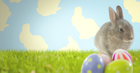 Digital composite of Easter rabbit with eggs in front of pattern Stock Photo