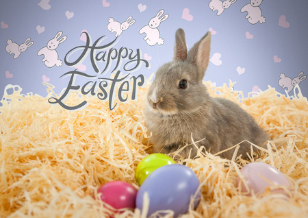 Digital composite of Happy Easter text with Easter rabbit in front of pattern Stock Photo