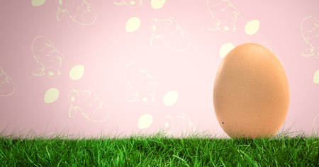 Digital composite of Egg in front of rabbit pattern