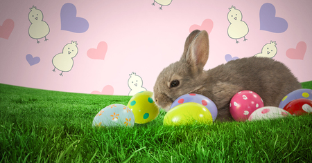 business pitch: Digital composite of Easter rabbit with eggs in front of pattern Stock Photo