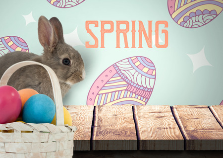 Digital composite of Spring text with rabbit with eggs basket in front of pattern
