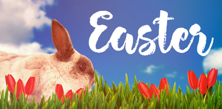 Happy easter logo against scenic view of blue sky
