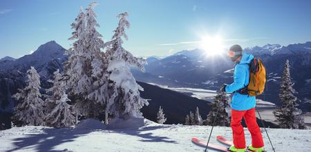 소나무에 대 한 스키 노란색 배낭 스키어 겨울 동안 눈으로 덮여