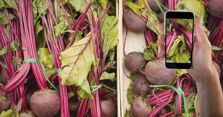 furniture part: Digital composite of Hand taking picture of beets with mobile phone in grocery store Stock Photo