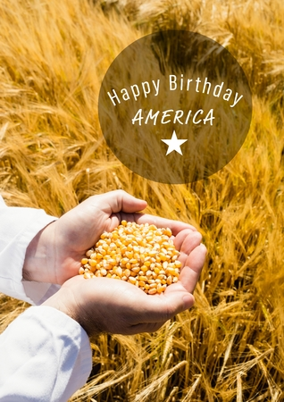 Digital composite of White fourth of July graphic in circle against cornfield and hands filled with corn