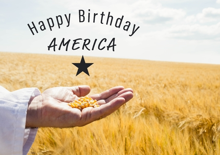 Digital composite of Grey fourth of July graphic against cornfield and hand holding corn