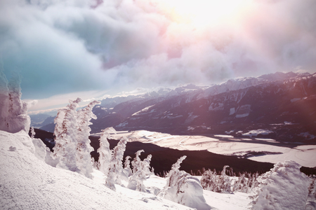 Digitally composite image of storm clouds  against snow covered tree on ski slope