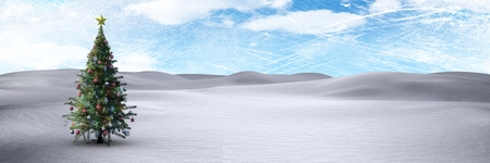 snowy hill: Digital composite of Christmas tree in winter landscape with blue sky