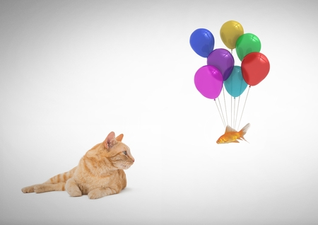 Digital composite of Cat watching fish tied to balloons