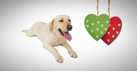 Digital composite of Dog with hearts hanging
