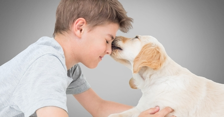 Digital composite of Boy against grey background with friendly dog licking his face