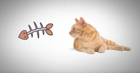 Digital composite of Cat watching fish bone graphi
