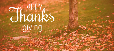 Thanksgiving greeting text against autumn leaves by tree trunk on field