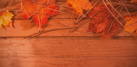 Overhead view of autumn leaves and twigs on wooden table