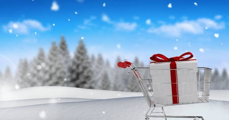 Digital composite of Gift in shopping trolley in Christmas Winter landscape